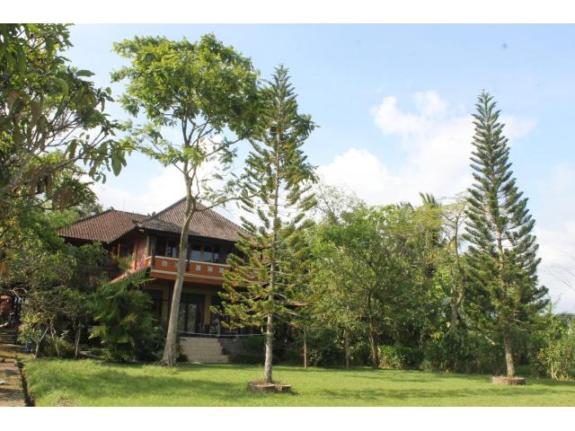 Mountain estate one hour west of Ubud
